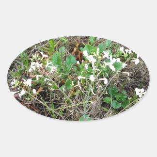 Wildflowers Oval Sticker