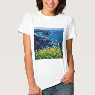 Wildflowers pacíficos Mendocino de la costa costa Playera