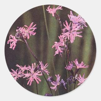 Wildflowers: Petirrojo desigual Pegatina Redonda