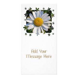 WILDFLOWERS PHOTO CARDS