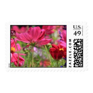 Wildflowers, pink, purple, burgundy, vivid colors stamp