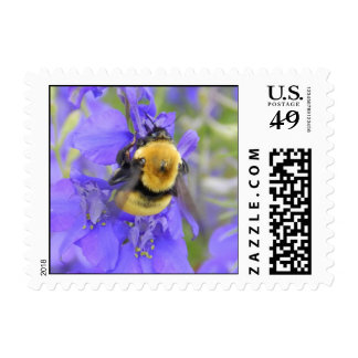 Wildflowers Stamps
