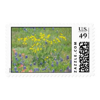 Wildflowers Postage Stamp