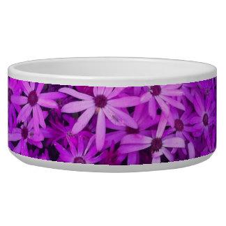 Wildflowers púrpuras para la esperanza bol para perro