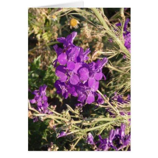 Wildflowers púrpuras tarjeta de felicitación