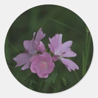 Wildflowers rosados entre la hierba etiqueta redonda