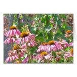 Wildflowers rosados felicitacion