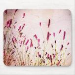 Wildflowers rosados oscuros del jardín alfombrilla de ratones