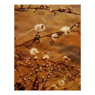 Wildflowers secos del invierno en el lago plantilla de membrete