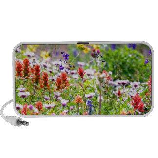 Wildflowers Travelling Speakers