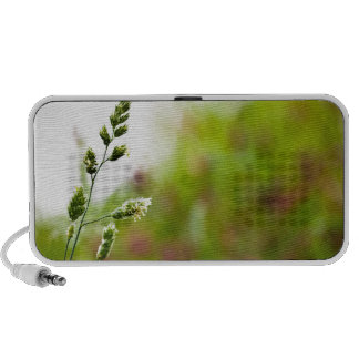 Wildflowers Portable Speakers