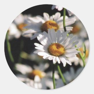 Wildflowers Sticker