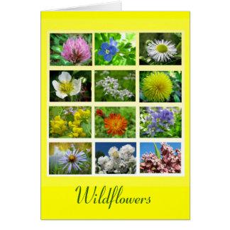 Wildflowers Tarjeta De Felicitación