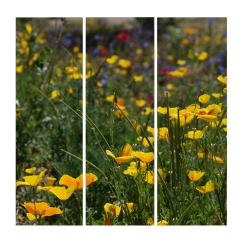 Wildflowers Triptych