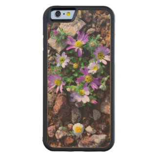 Wildflowers Carved® Maple iPhone 6 Bumper Case