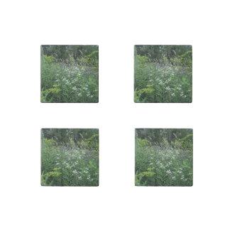 Wildflowers y imanes de piedra de las malas imán de piedra