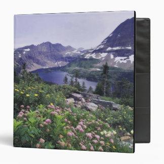 Wildflowers y lago ocultado, arbustivos