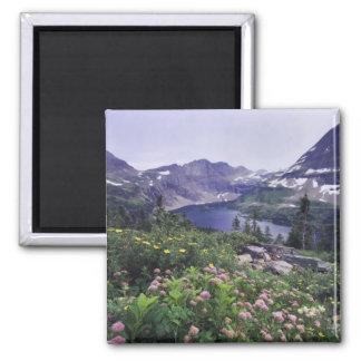 Wildflowers y lago ocultado arbustivos imán para frigorífico