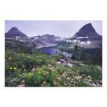 Wildflowers y lago ocultado, arbustivos arte con fotos