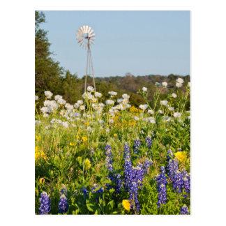 Wildflowers y molino de viento en país de la tarjetas postales