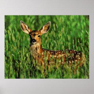 Wildlife 11 print