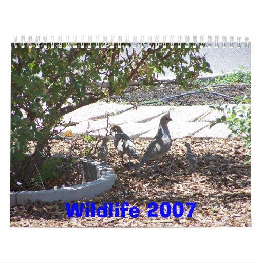 Wildlife 2007 wall calendars