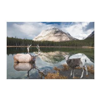 Wildlife at Buller Pond Canvas Print