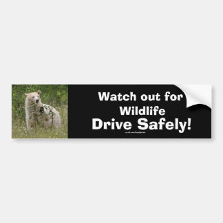 Wildlife Bears Animal-lovers Design Car Bumper Sticker