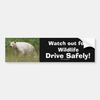 Wildlife Bears Animal-lovers Design Bumper Sticker