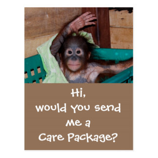 Wildlife Care Package Postcard