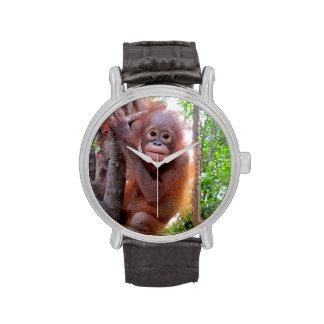 Wildlife Charity Baby Orangutan Wristwatches