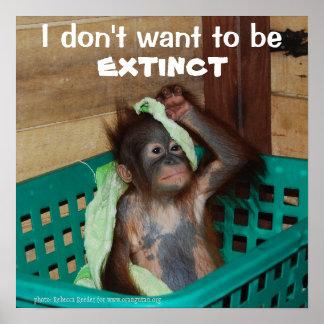 Wildlife Conservation Grumpy Orangutan Baby Poster