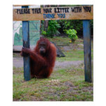 Wildlife Conservation v Litter and Trash Posters