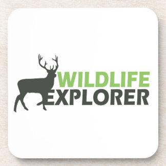 Wildlife Explorer Coaster