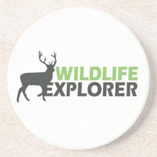 Wildlife Explorer Coasters