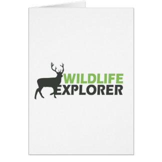 Wildlife Explorer Greeting Cards