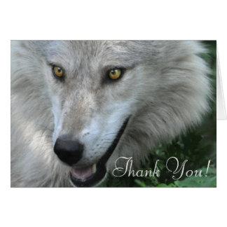 Wildlife Grey Wolf Animal-lover design Card