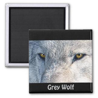 Wildlife Grey Wolf Animal-lover design Refrigerator Magnet