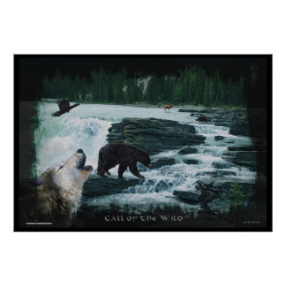 Wildlife Hunting At Rocky Mountain Waterfall Art Poster