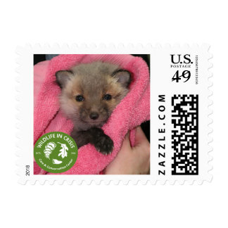 Wildlife in Crisis Fox Postage Stamps