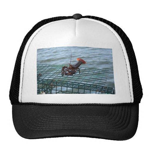 Wildlife in Maine Trucker Hats