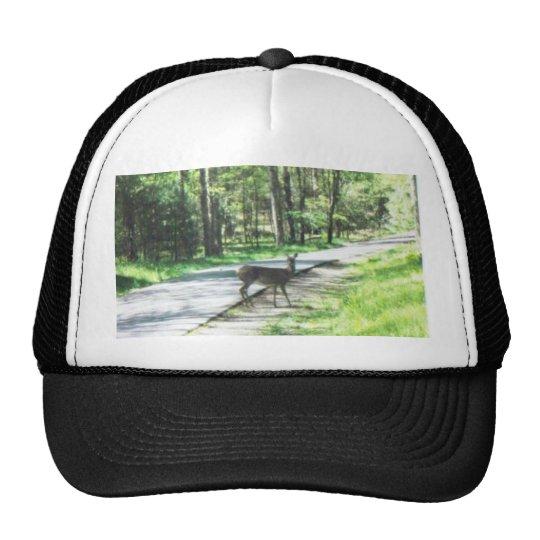wildlife in the smokies #72 trucker hat