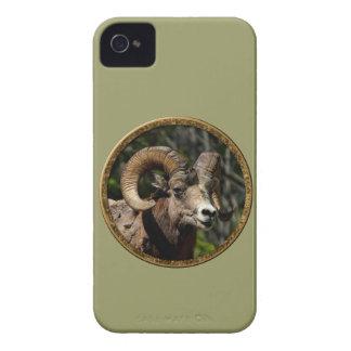 Wildlife iPhone 4 Cases