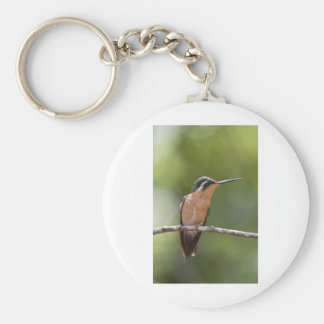 wildlife keychains