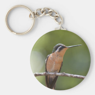 wildlife key chains