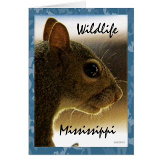 Wildlife Mississippi Gray Squirrel Greeting Greeting Card