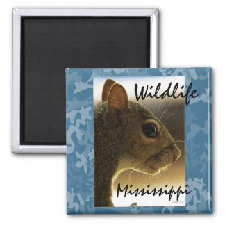 Wildlife Mississippi Gray Squirrel Magnet