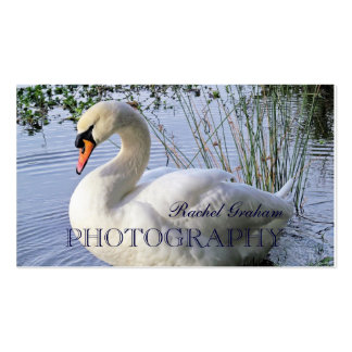 Wildlife (Mute Swan) Photography Business Card Template