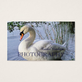 Wildlife (Mute Swan) Photography Business Card