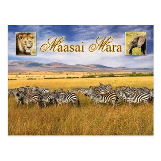 Wildlife of Maasai Mara in Kenya Postcard